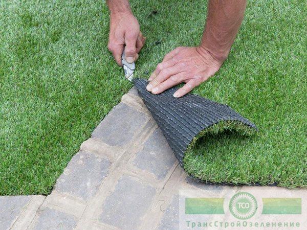 Трава в бетоне бетон в евпатории купить цена с доставкой